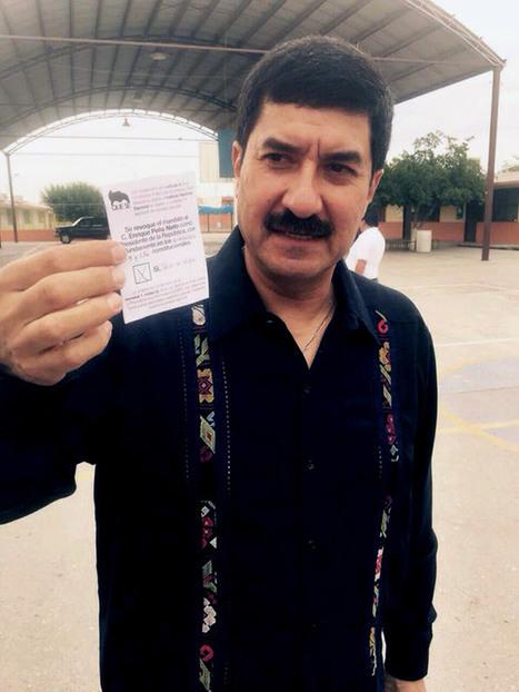 Media jornada | Activismo pro Verde y tensión en Oaxaca y Guerrero manchan elección | Activismo en la RED | Scoop.it
