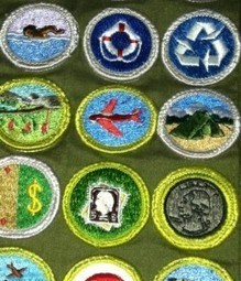 Better Prior Learning Assessment Can Be Higher Education's Merit Badge - The EvoLLLution | The EvoLLLution | AAEEBL -- MOOCs, Badges & ePortfolios | Scoop.it