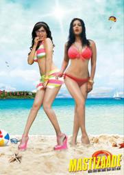 Mastizaade (2016) | Watch Full Movie Online Free | Watch Full Hindi Movies Online Free | Movies80.com | Scoop.it