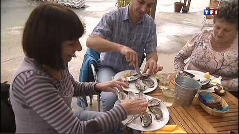 Premières dégustations d'huîtres du bassin d'Arcachon - Vidéo replay du journal televise : Le journal de 13h - TF1 | Le Bassin d'Arcachon | Scoop.it
