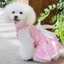 Interesting Facts About Dog Dresses for Wedding | Pets Clothing | Scoop.it