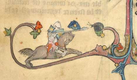 Knight v snail - in pictures | Middle ages | Scoop.it