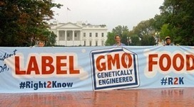 GMO Labeling Bill Voted Down In Senate | GMOs & FOOD, WATER & SOIL MATTERS | Scoop.it