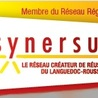 SYNERSUD