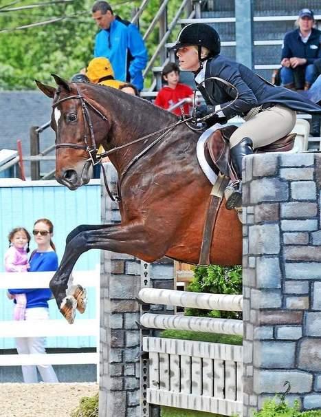 Junior weekend starts latest Devon Horse Show - Daily Local News | Horses | Scoop.it