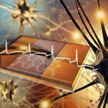 Il microchip che «parla» coi neuroni   PaginaUno - Innovazione   Scoop.it