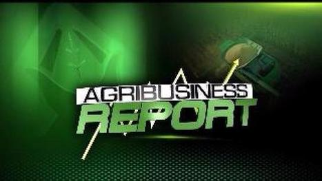 AGRIBUSINESS: Bipartisan Effort to Extend Biodiesel Tax Credits ...   Agribusiness   Scoop.it