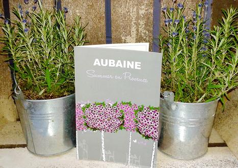 Summer en Provence at Aubaine | diplomedrygin | Scoop.it