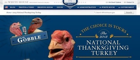 So HealthCare.gov was a flop, but WhiteHouse.gov/turkey works great | Pauls Content Curation | Scoop.it