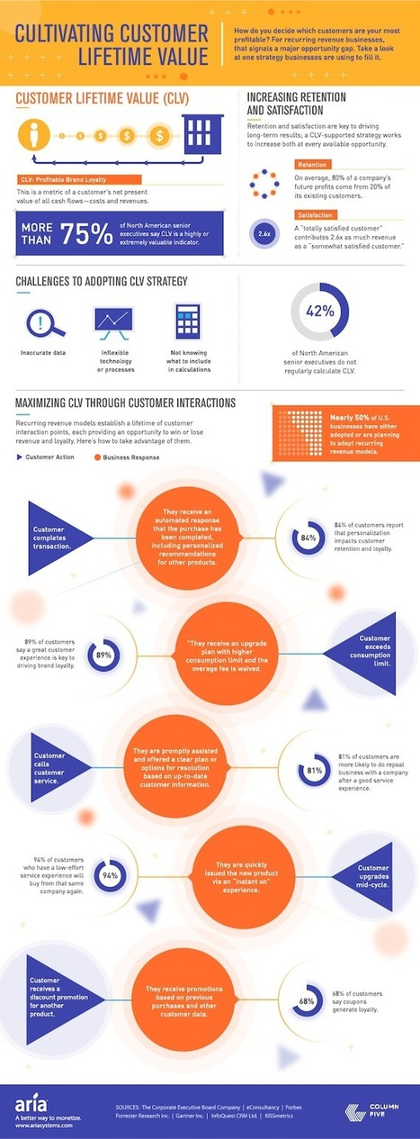 A Visual Introduction to Customer Lifetime Value [Infographic] | MarketingHits | Scoop.it