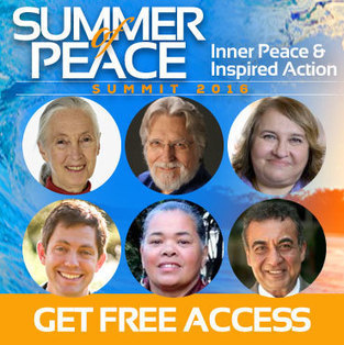 Summer of Peace   Empathy and Compassion   Scoop.it