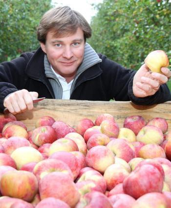 Saint-Vite. Tous pour la pomme Juliet - La Dépêche | Arboriculture: quoi de neuf? | Scoop.it