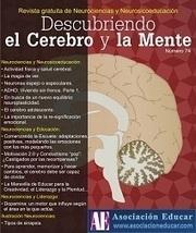 Conferencia: ¿Cómo logro que mis alumnos aprendan más y mejor? | La función del cerebro en la vida diaria | Scoop.it