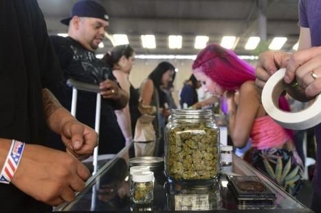Los Angeles: un marché se consacre au cannabis | Véronique DUPONT | États-Unis | La seconde vue via telephone sembler etre franco essor | Scoop.it