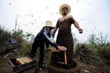 Honey Laundering | Foodie | Scoop.it