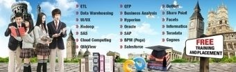Indian IT Training and Placement Company Edison, NJ | Business Listing | Scoop.it