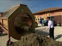 Agricoltura: Enea, sfruttare multifunzionalità della canapa - Con i piedi per terra | Canapa e calce | Scoop.it