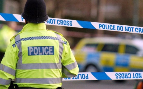 Girl, 11, 'sexually assaulted by three boys under the age of 10' | Policing news | Scoop.it