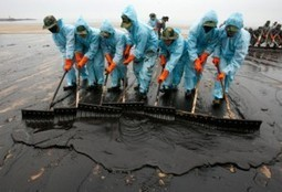 Who Pays for the Massive Oil Spill Clean-Up in the Gulf? : The Consumer Warning Network | Oil Spill | Scoop.it