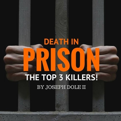 Death in Prison: The Top 3 Killers | Library@CSNSW | Scoop.it