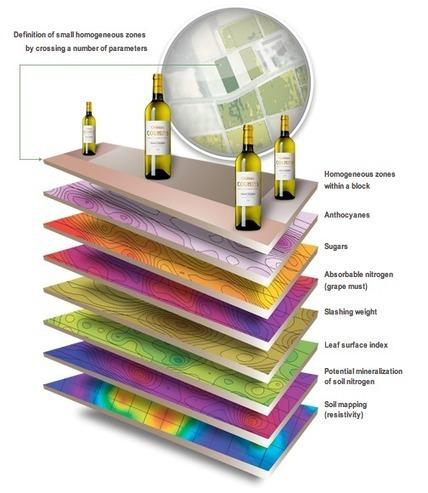 Bordeaux embraces greener viticulture | Autour du vin | Scoop.it