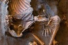 Libye : Stone-Age Skeletons Unearthed In Sahara Desert | World Neolithic | Scoop.it