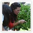 Home Grown Edible Landscapes   Annie Haven   Haven Brand   Scoop.it
