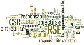 Energie et développement: RSE : une définition | L'entreprise de demain sera-t'elle responsable ? | Scoop.it