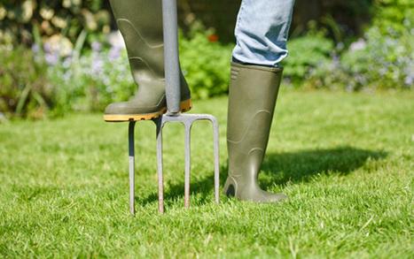 Gardening Calendar: The Top 3 Gardening Jobs for February | Gardening | Scoop.it