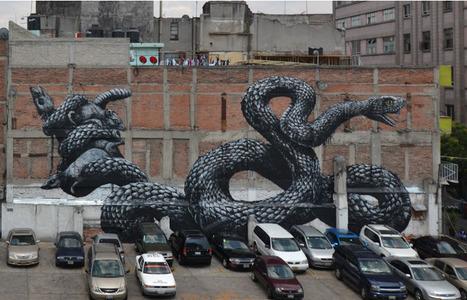 ROA in Mexico | The sreet art of graffiti | Scoop.it