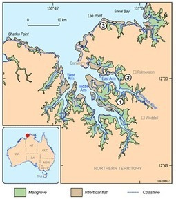 Geoscience Australia: AusGeo News 95 - The role of sediments in nutrient cycling in the tidal creeks of Darwin Harbour | Water Quality | Scoop.it