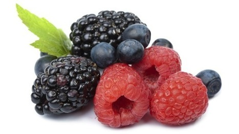 Berries: more testing is not the answer. We need better practices in source countries like China | Business Studies: BROB | Scoop.it
