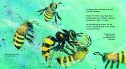 Raymond Huber: Flight Of The Honey Bee | Black-Eyed Susan Picture Book Nominees 2014-2015 | Scoop.it