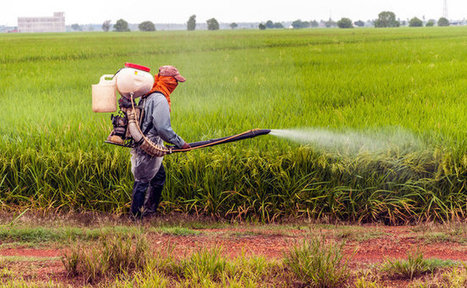 Monsanto's Roundup Found In 70 Percent Of Drinking Water | Care2 Healthy Living | WHAT THINGS ARE GMO FOODS OR SUPPORTERS OF MONSANTO? Weather Disasters | Scoop.it