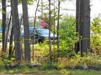Millipore: Tree removal for safety - Monadnock Ledger Transcript | Environmental Friendly | Scoop.it