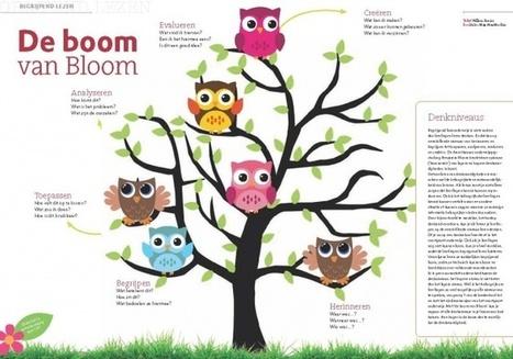 Met de boom van Bloom stelt u de juiste vragen - CPS.nl | Master Onderwijskunde Leren & Innoveren | Scoop.it