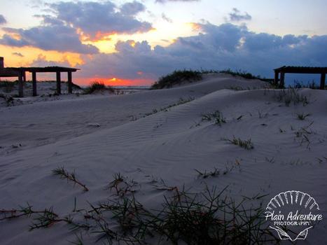 Mustang Island State Park- Port Aransas   Texas Coast Living   Scoop.it