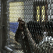 VIDEO: Yasiin Bey (Mos Def) Undergoes Force-Feeding Endured by Guantánamo Hunger Strikers   BloodandButter   Scoop.it