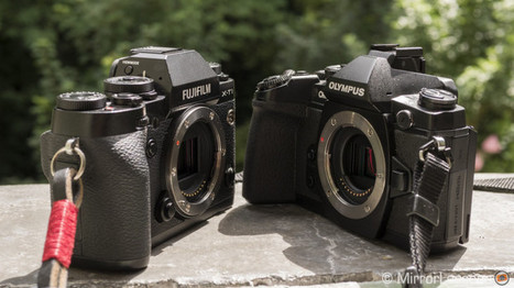 Olympus OM-D E-M1 vs. Fujifilm X-T1 - A Game of Mirrorless Thrones | MirrorLessons | Fuji Cameras | Scoop.it