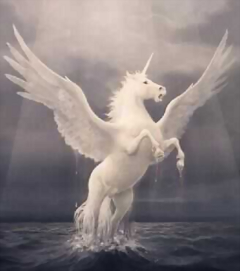 Pegacorn   They were here and might return   Scoop.it