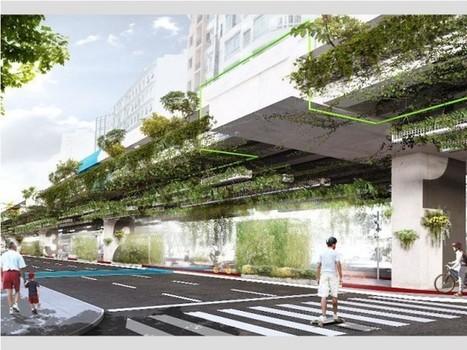 A São Paulo, un axe routier se transforme en voie végétalisée | Plusieurs idées pour la gestion d'une ville comme Namur | Scoop.it