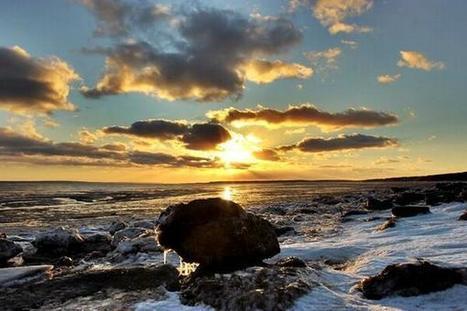 Tweet from @lyhamel | Nova Scotia Fishing | Scoop.it