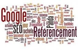Dossier référencement, le contenu dupliqué [Partie 3] | Blog gagnant : gagner de l'argent avec son blog, formation Wordpress, actus infos webmarketing , affiliation | Stratégies digitales | Scoop.it