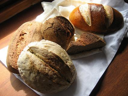 Celiaquia: grupos de riesgo y síntomas | Gluten free! | Scoop.it