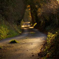 Wickham Hall Lane by Stuart Miller | Kol Tregaskes Photography Blog | Scoop.it