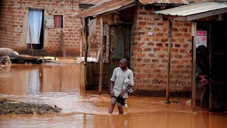 Ilha do Príncipe: chuvas causam enormes danos | São Tomé e Príncipe | Scoop.it
