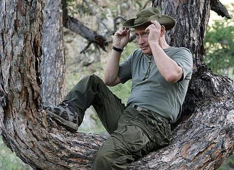 Quand les crocodiles grimpent aux arbres | Intervalles | Scoop.it
