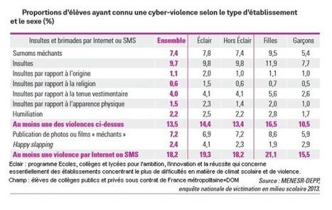 Un collégien sur cinq a déjà été victime de cyberviolence   Les réseaux sociaux - EPN Cyberglac' La Glacerie   Scoop.it