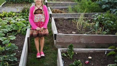 CEOs with Daughters Run More Socially Responsible Firms - blogs.hbr.org (blog) | Women, Business, and Family Challenges | Scoop.it