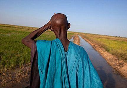 «Main basse sur la terre. Land grabbing et nouveau colonialisme», publication du journaliste et documentaliste italien Stefano Liberti | ¨¨Qui est le plus sauvage?¨¨ | Scoop.it